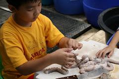 Clay examining a tentacle