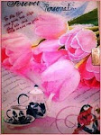 Aadhilaa's  Diary