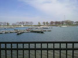 the belmont harbor