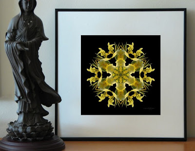 A framed display of the Hidden Treasures flower mandala, created from a photo of a beautiful yellow lily.