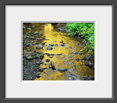 This framed photo of a bubbling brook in Olympic National Park was turned into a pool of shimmering gold by the setting sun.