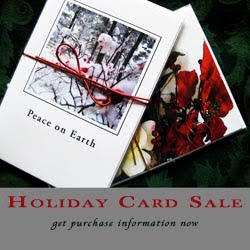 Holiday Card Sale Ad