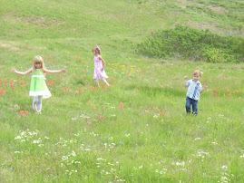 Kiddos enjoying a lovely field !