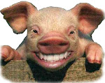 """grippe porcine"" ?"
