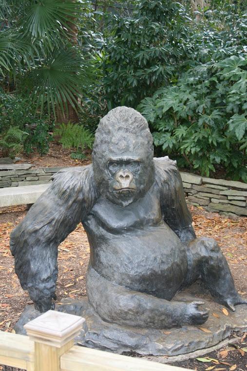Atlanta Zoo 2008
