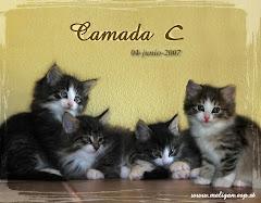 """""""Camada C: 4 junio 2007!!!"""""""