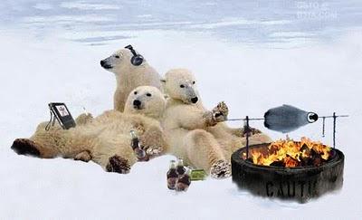 Полярна мечка да си в близкото бъдеще - всички са толкова загрижени за теб...