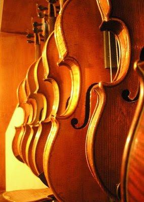 С правилна цигулка далеч се стига