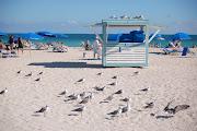 Med smeknamnet Solskensstaten är Florida en av de mest populära resmålen i . (dsc )