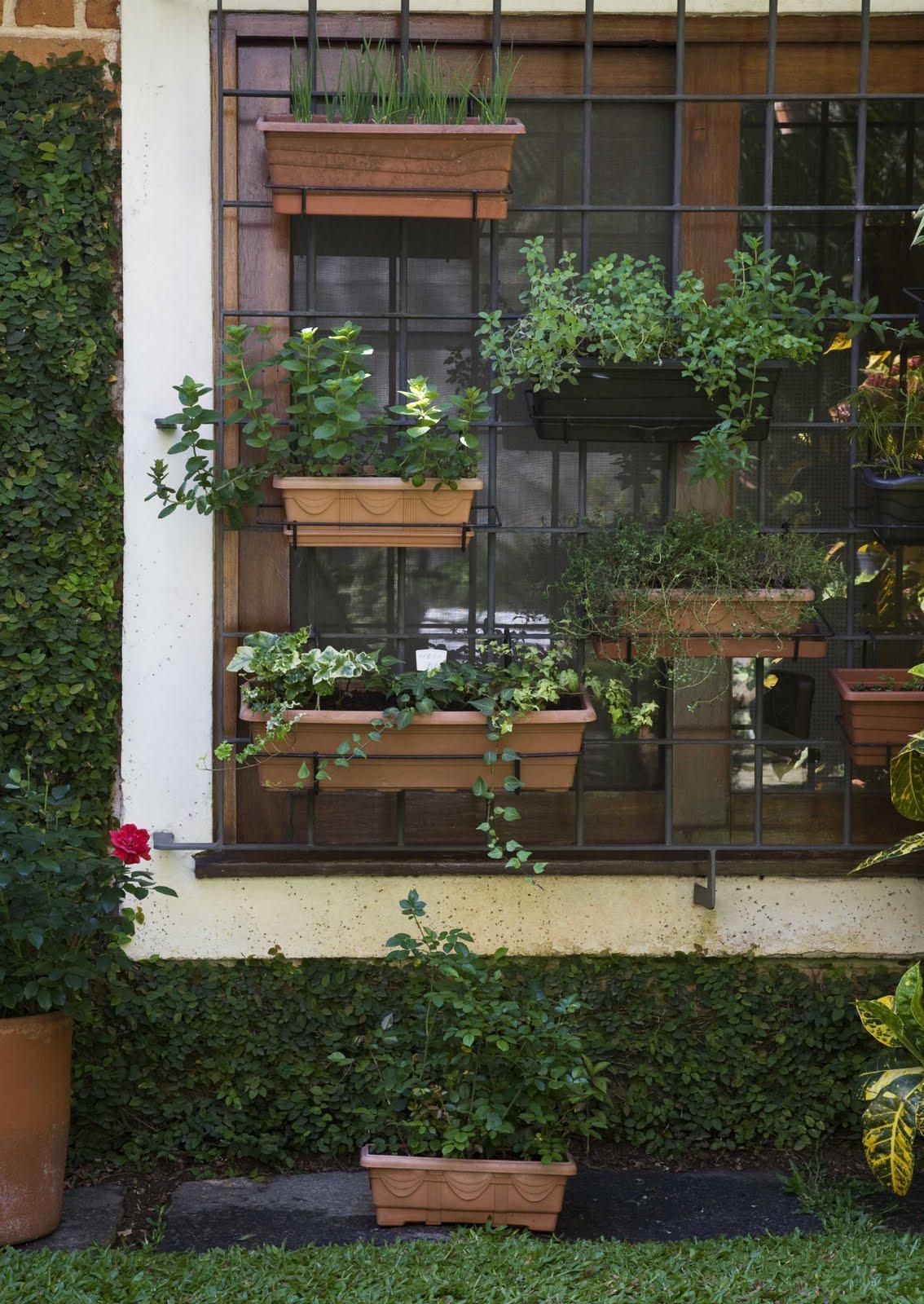 jardim vertical terraco:Lilita's World: Terraço da Valda!