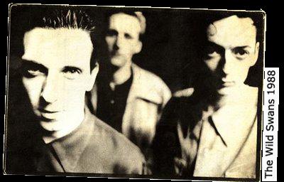 Wild Swans 1988
