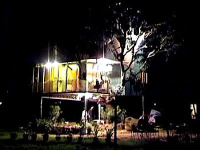 house on a mango tree images