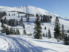 Szárkő hegység
