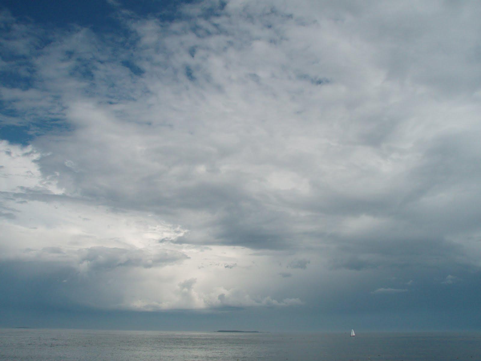 [view+from+backshore.jpg]