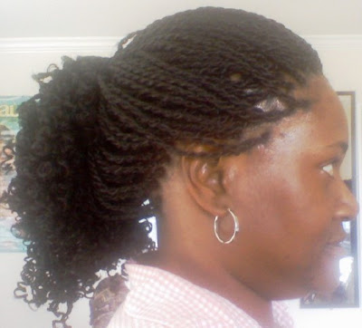 Senegalese Twist Braids Hairstyles