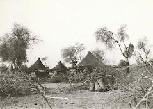 مخيم تيشط 1934
