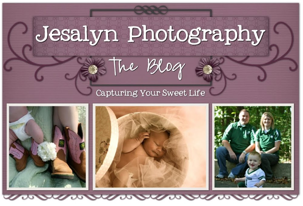 Jesalyn Photography Blog