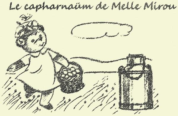 Le capharnaüm de Melle Mirou