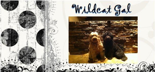 Wildcatgal