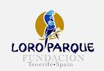 Fundacion Loro Parque