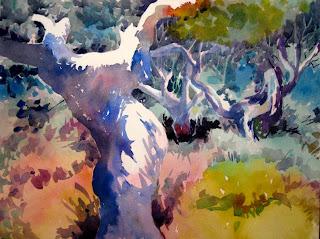 acuarela paisaje entre encinas watercolor landscape