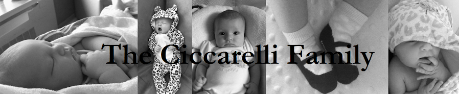The Ciccarelli Family