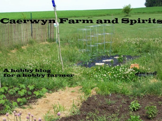 Caerwyn Farm and Spirits