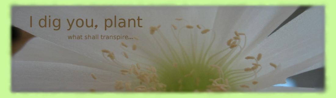 I dig you, plant
