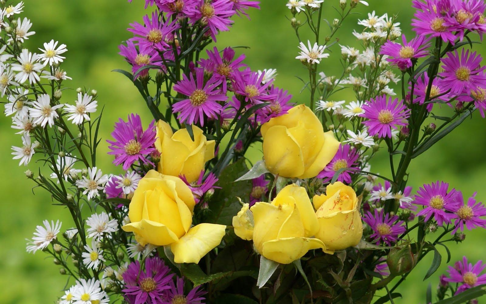 http://3.bp.blogspot.com/_BEyQraI-KQQ/SxSxBnPSpGI/AAAAAAAADt8/ruf7GHaqdiE/s1600/love_roses-dsc02878-a1.jpg