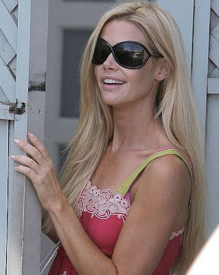 Denise Richards sexy hot photo