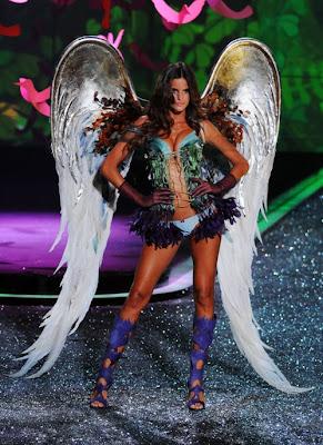 Victoria's Secret fashion show 2009 pictures