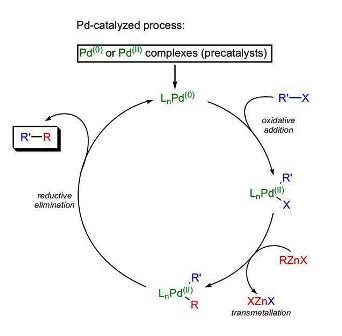 Carbonylative Suzuki Coupling Mechanism