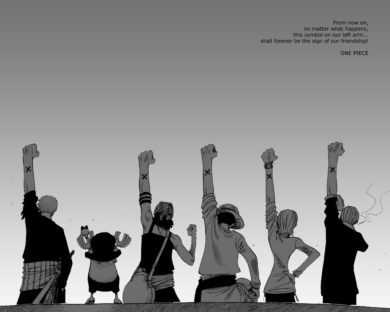 One Piece HD & Widescreen Wallpaper 0.484260060365565
