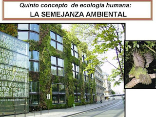 Ecologia humana semejanza ambiental