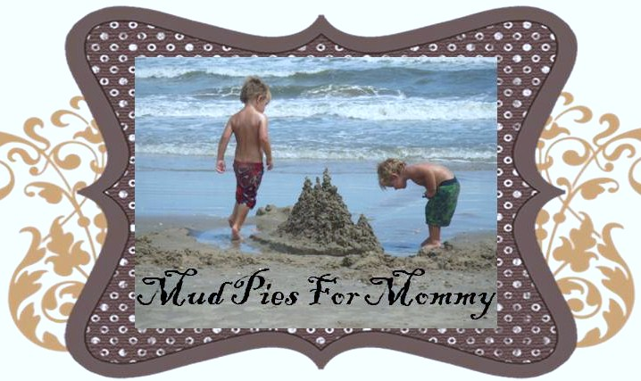 Mud Pies For Mommy