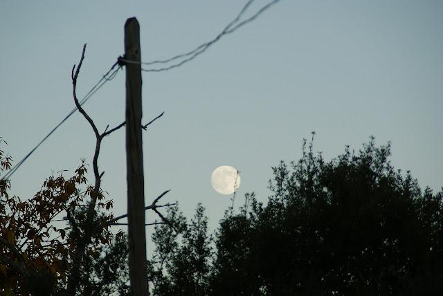 noche-en-fuenteheridos-sierra-de-Huelva