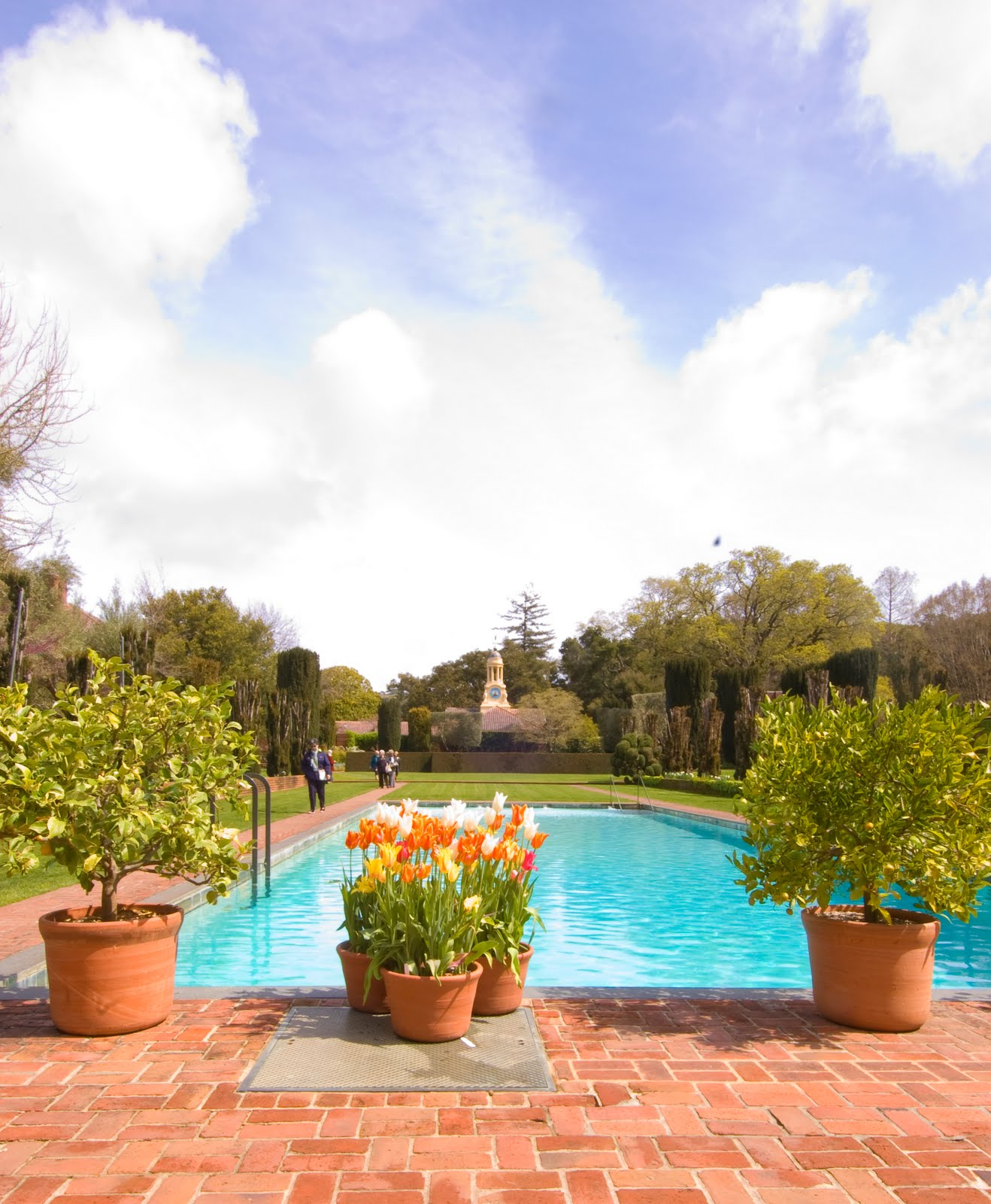 Chic provence for une petite pause early spring at for Filoli garden pool