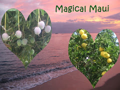 Magical Maui