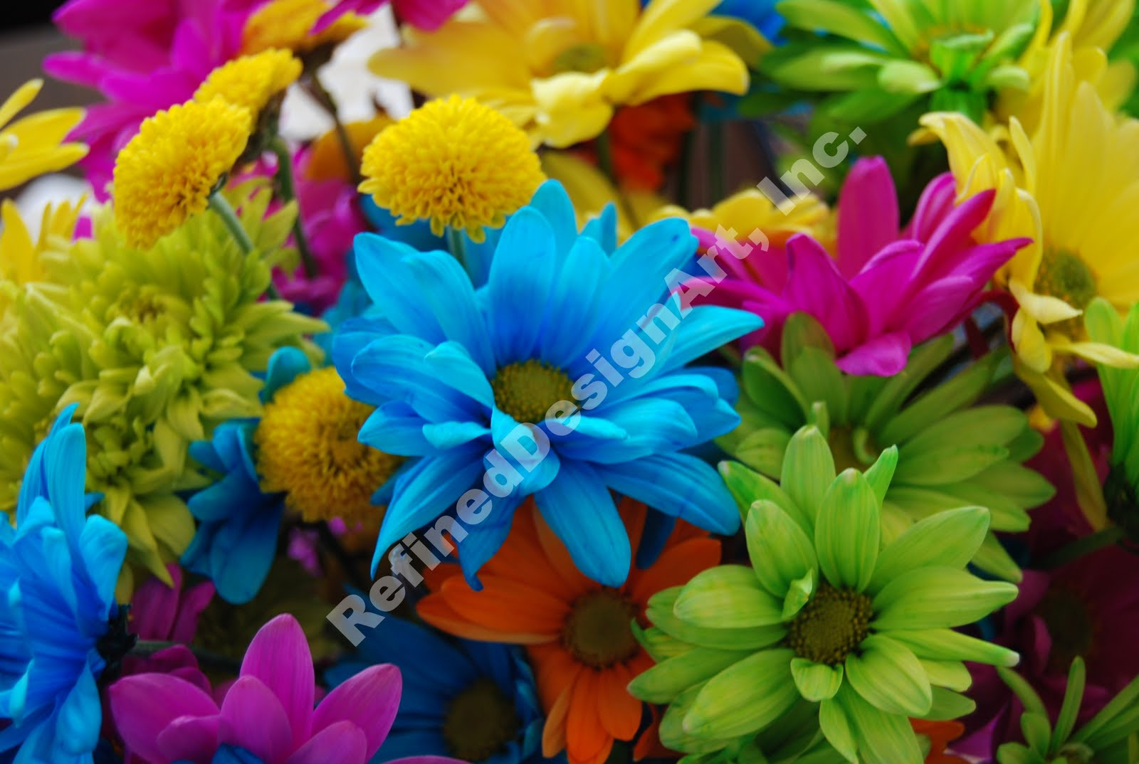 Refineddesignart flowers multi colored for How to make multi colored flowers