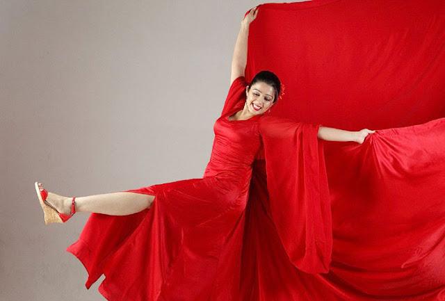 charmi_red chilli_ actress pics
