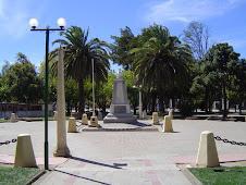 QUIRIHUE (Provincia de Ñuble, VIII Region)