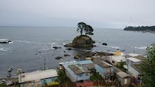 Caleta Puerto Nuevo (Lota)