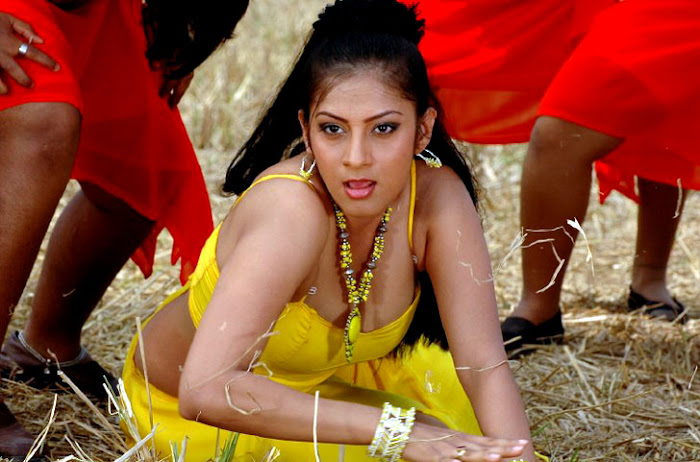 sindhu tolani hot photoshoot