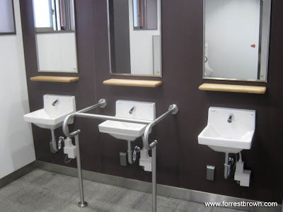 one fairly annoying thing about japan is that in many public bathrooms there is no way to dry your hands after you wash them some bathrooms have the blower