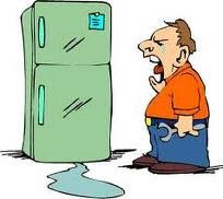 Refrigerator Repair and Troubleshooting Tips