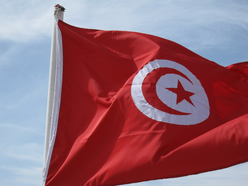 the Tunisian flag, with a crescent and star for Islam, the color white for purity, and the red is arbitrary  (so said our Tunisian guide).