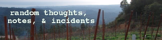 Random Thoughts, Notes, &amp; Incidents