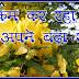 बिछोह [कविता]- शबनम शर्मा