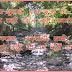 मुनगे का पेड़ [कविता] - त्रिजुगी कौशिक