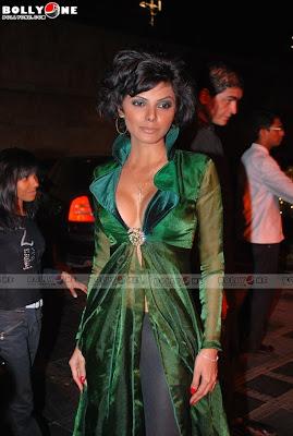 Celebrities at Triumph Lingerie show